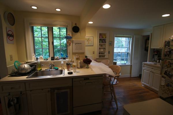 before-kitchen-windows